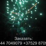 Стрелы Амура (FP-B350) 6723 салют
