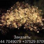 Повелитель молний(FFW2034-300) 7460 салют