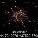 Прикосновение рая (FP-B317) 6094 салют