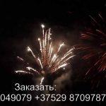 Силуэт (FP-B204) 6324 салют