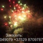 Силуэт (FP-B204) 6325 салют