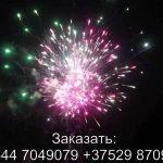 Шаман шоу (TKB969) 7067 салют