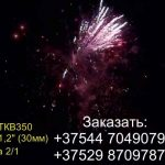 Полет Пегаса (FP-B306) 6704 салют