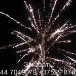 Страна фантазий (FP-B315) 6524 салют