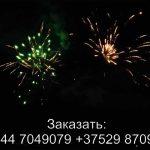 Лемур (FFW2047-54) 6367 салют