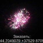 Шаман шоу (TKB969) 7069 салют