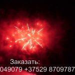 Силуэт (FP-B204) 6329 салют