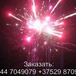 Фурор (FP-B338) 6748 салют