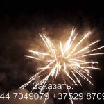 Силуэт (FP-B204) 6331 салют