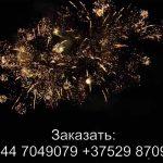 Лемур (FFW2047-54) 6370 салют