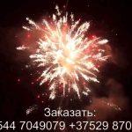 Красный лотос (FP-B364) 7273 салют