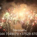 Новогоднее наступление (FP-B337) 7005 салют