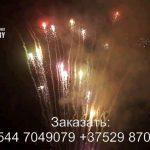 Новогоднее наступление (FP-B337) 6998 салют