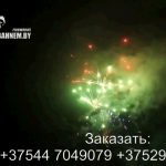 Огненный феникс (FP-B120) 6682 салют