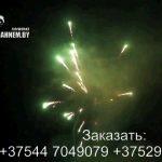 Огненный феникс (FP-B120) 6687 салют
