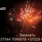 Огненный феникс (FP-B120) 6688 салют