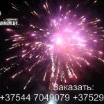 Огненный рай (FP-B324) 6601 салют