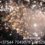 Огненный рай (FP-B324) 6605 салют