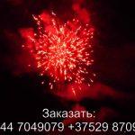 Жар-Птица (FFW2048-69) 6299 салют