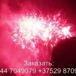 Фейерверк BOX (TKB959) 8631 салют
