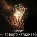 Фейерверк BOX (TKB959) 8623 салют