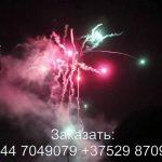 Фейерверк BOX (TKB959) 8624 салют