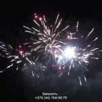 Зубр(FP-B123) 10125 салют