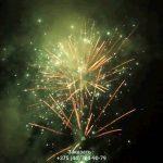 Новогодняя ночь(FP-B356) 10157 салют
