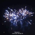 Зубр(FP-B123) 10124 салют