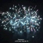 Зубр(FP-B123) 10123 салют